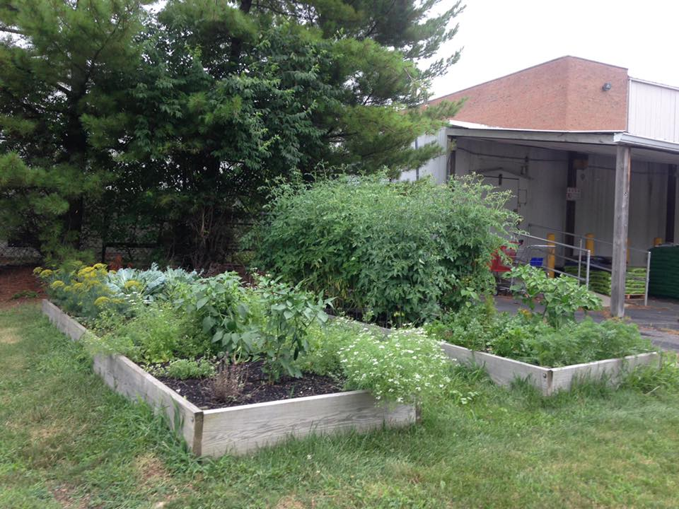 Garden Product from ScottsMiracle-Gro Helps LifeCare Alliance Nourish the Human Spirit